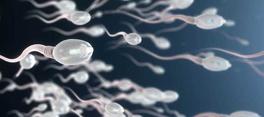 can-testosterone-therapy-boost-sperm-production
