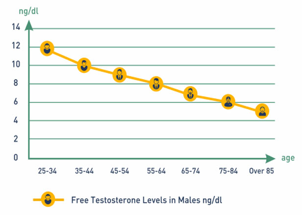 Cialis testosterone levels